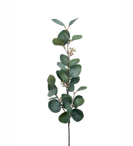 Eucalyptus med bær (grønn 70 cm)
